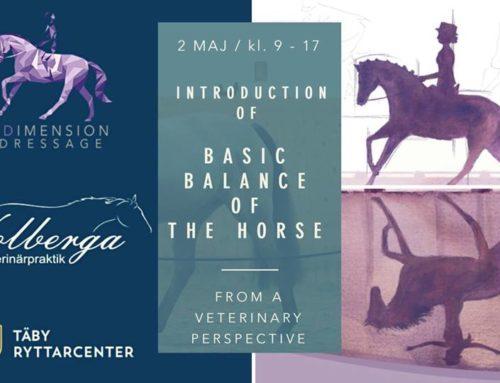 Hästen i balans – Clinic på Täby Ryttarcenter