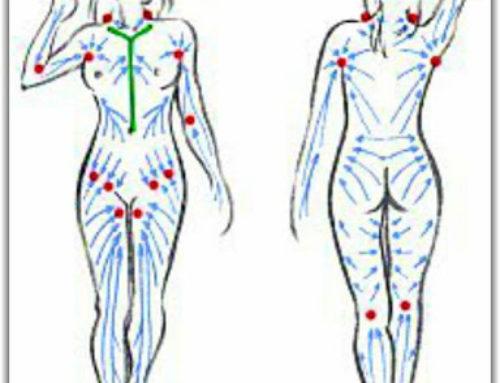 Sätt fart på kroppens avlopp (lymfsystemet) och immunförsvar!